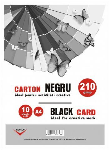 Carton negru 210 g/mp