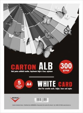 Carton alb 300 g/mp